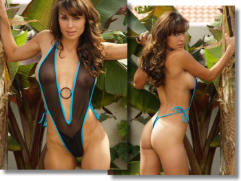 see through mesh one piece swimsuit barely there by brigitewear