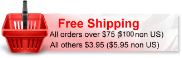 Free Shipping Special