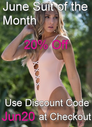 June Suit of the Month Palm Srings Plunge thong one piece swimsuit or Rio bottom sheer when wet bathing suit