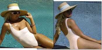 The Sheer Elegance one piece bathing suit by Brigitewear available in thong or Rio bottom
