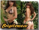 Sultry tanthru bikinis and sheer swimwear from Brigitewear