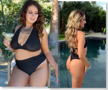 High waist bikini bottom in thong or rio and sheer bikini halter top