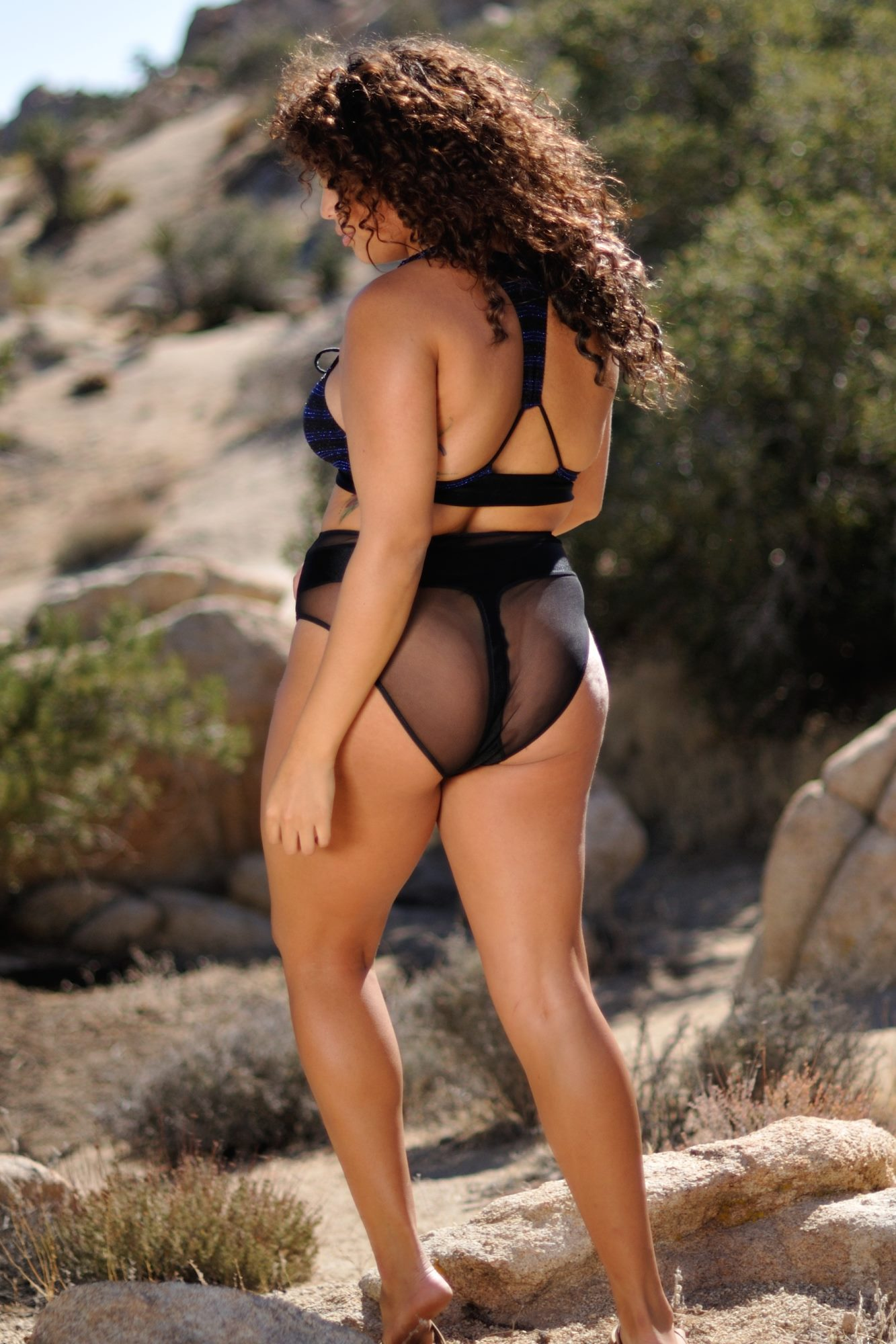 fdc98b41c4c80 High Waist Faux Thong Bottom. Lace Up Bikini top with Faux thong bikini  bottom back. The Royal sheer women's bikini swimsuit by brigitewear with  cheeky ...